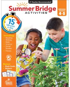 Small Image for Summer Bridge Activities~Bridg