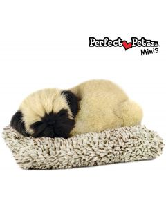 Small Image for PERFECT PETZZZ MINI~MINI PUG