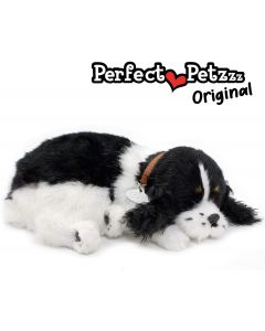 Small Image for PERFECT PETZZZ~COCKER SPANIEL