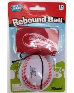 Small Image for SPORTS REBOUND BALL